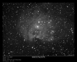NGC2174/2175 du 14/12/2010