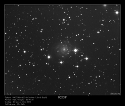 IC239